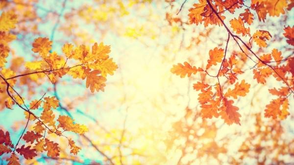 Φθινόπωρο και με τη βούλα! Στις 10:50 ο ήλιος «έδειξε» την αλλαγή της εποχής!